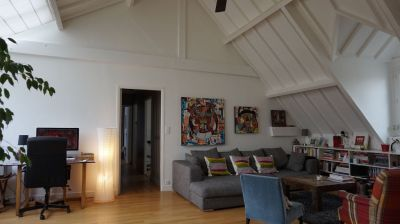 Appartement type loft  de charme Saint louis